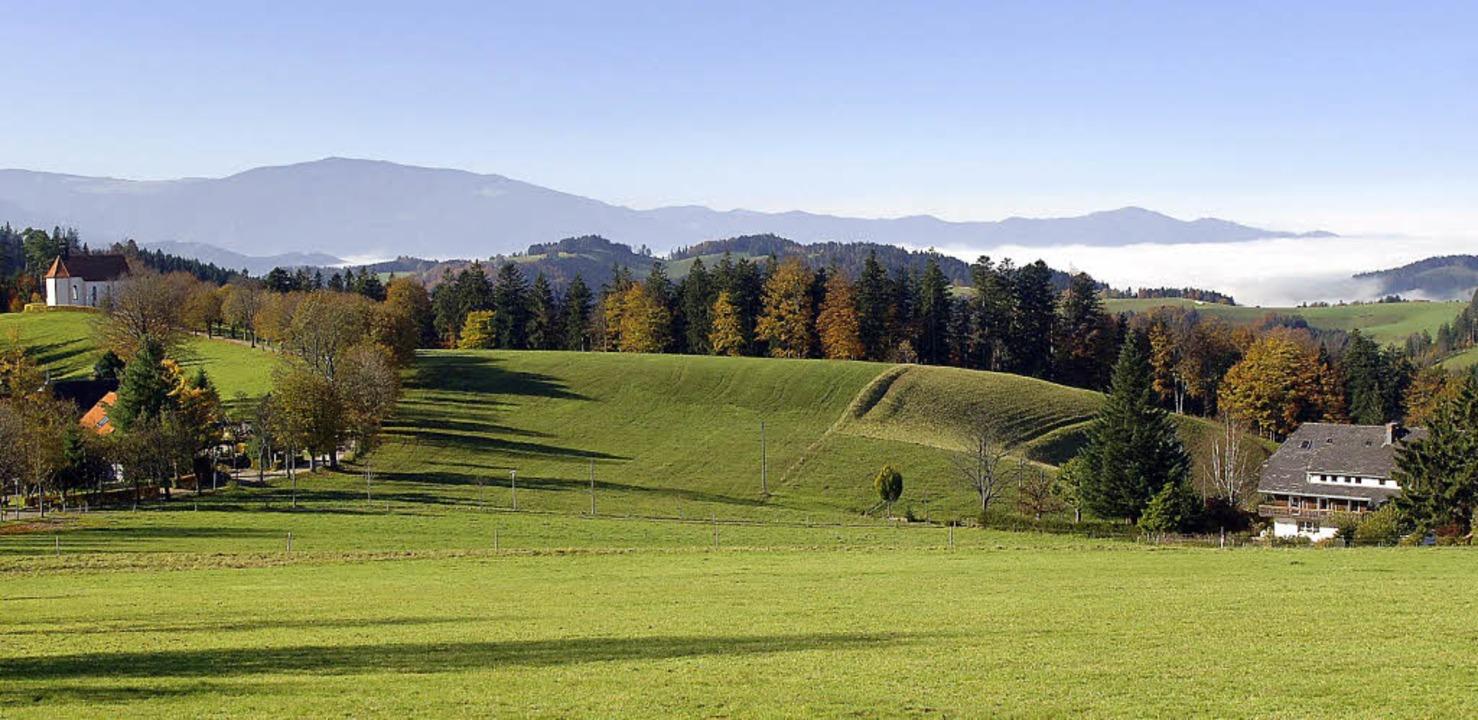 Schön und wertvoll: die Landschaft im Kreis, hier  bei St. Märgen.   | Foto: Thelinke (istockphoto.com)