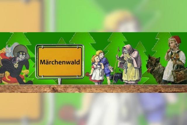 IN DEN MÄRCHENWALD