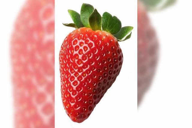 Der Klimafußabdruck der Erdbeere