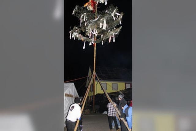 Guggenbaum ist 16 Meter hoch