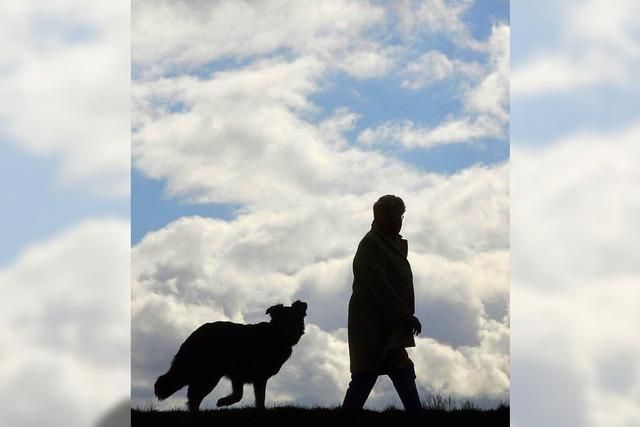 Hundesteuer bleibt auf hohem Niveau