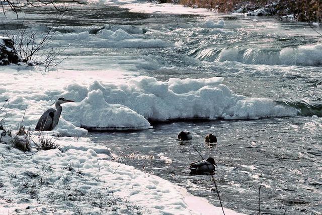 Gefahr von Eis-Stau und Überflutungen wächst
