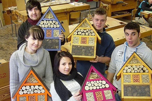 Der Bau von Luxushotels für Insekten macht Schule