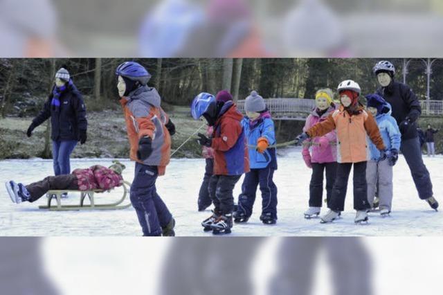 Eiszeit für alle auf dem Waldsee