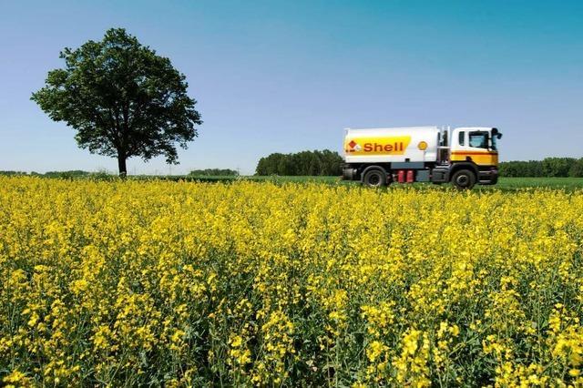 Schlechte Ökobilanz für Biokraftstoffe?