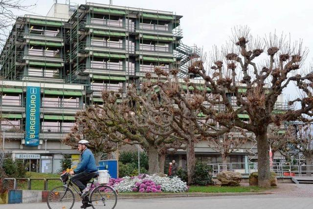 OB-Wahl in Rheinfelden: Drei Kandidaten gibt es schon