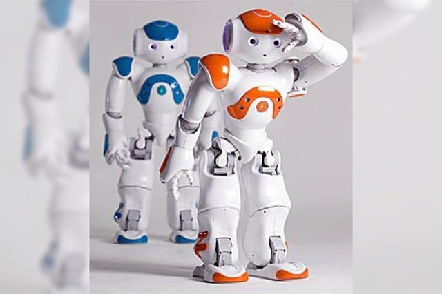 BADISCHE-ZEITUNG.DE: Teurer Roboter