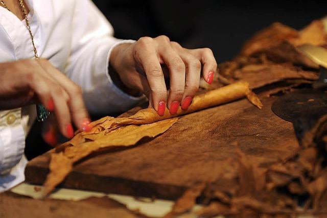 Zigarren aus Kuba beliebt