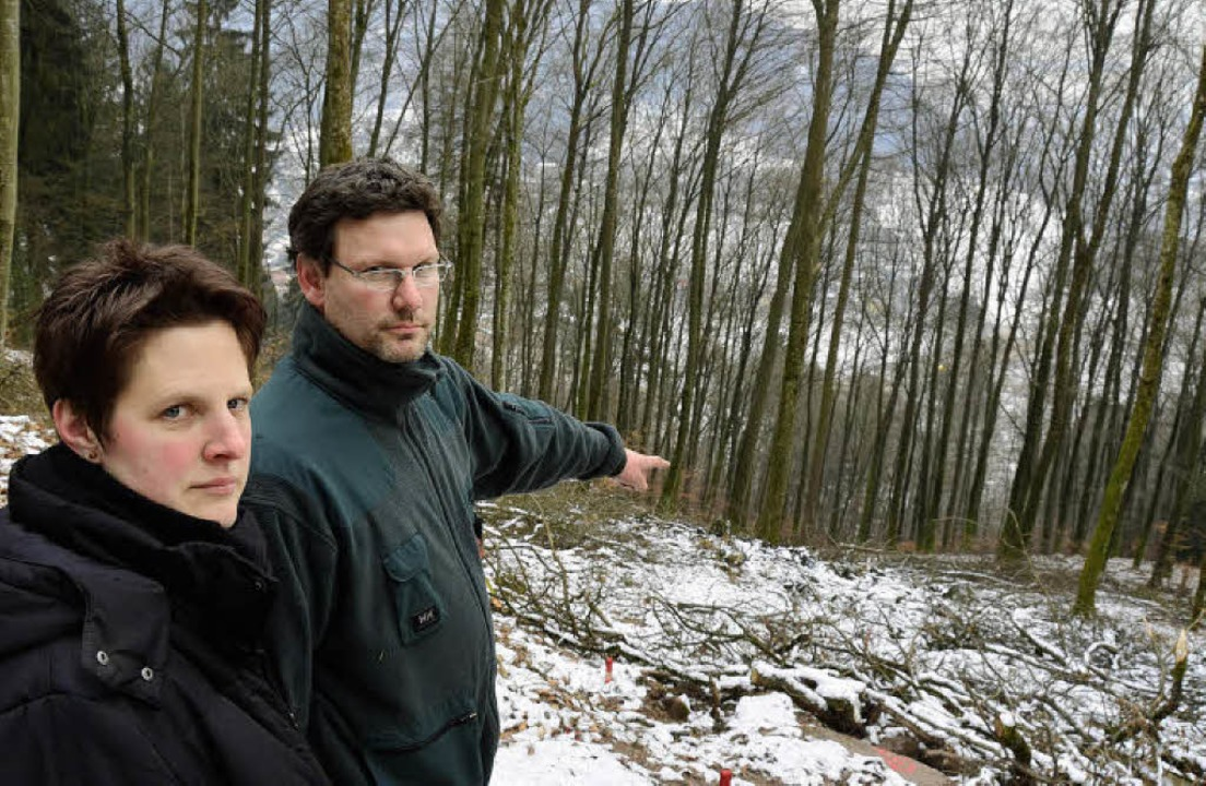 Keinen Funken Verständnis haben wie BI... den Bäumen ist Langenau zu erkennen.   | Foto: André Hönig