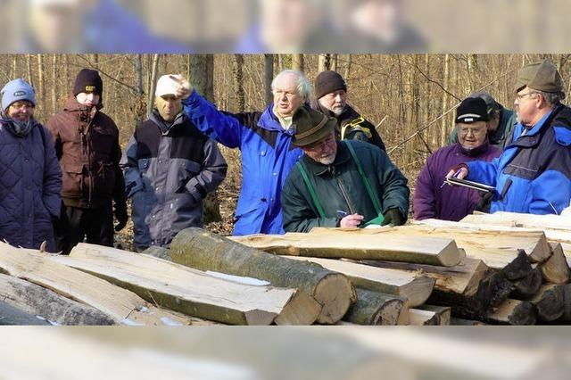Holzversteigerung mit leckeren Überraschungen