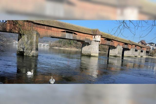 Die Brücke zum Frühling