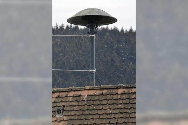 Die Heuler bleiben auf dem Dach