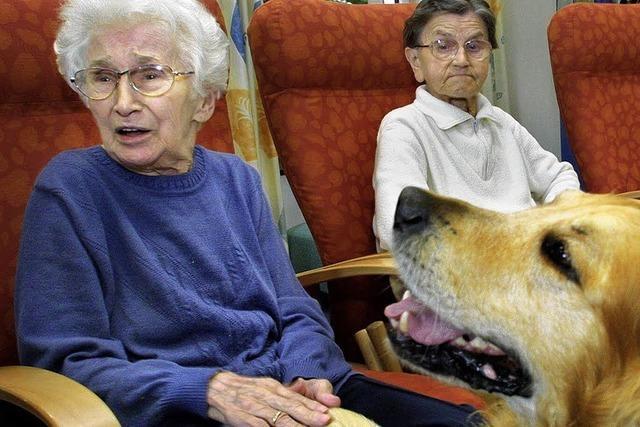 Hunde sind gern gesehene Gäste in Pflegeheimen