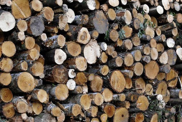 Holzverkauf bringt Rekordergebnis
