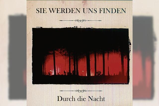 CD: INDIE-ROCK: Liebäugelei mit rabiatem Sound