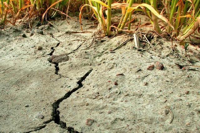 Land soll sich gegen den Klimawandel rüsten
