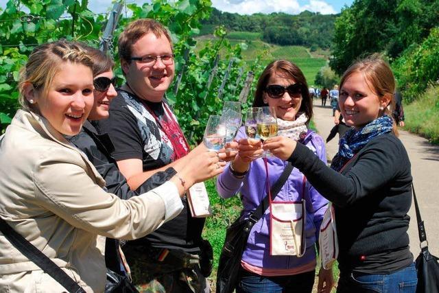 Kulinarische Weinwanderung: 1400 Anmeldungen liegen schon vor