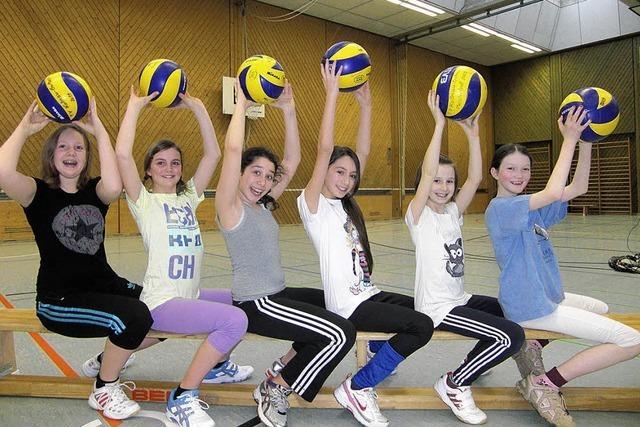 Lust auf Volleyball ?
