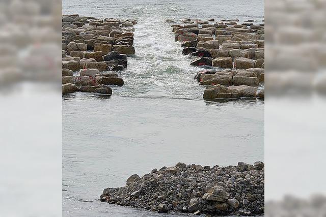 Wasser Marsch für das Umgehungsgewässer