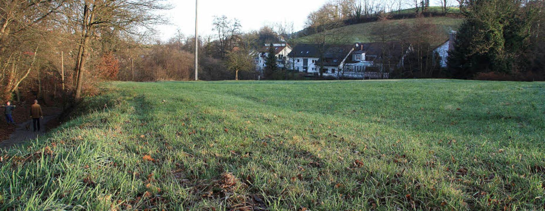 Auf dieser Wiese am südlichen Siedlung...u soll ein Rückhaltebecken entstehen.   | Foto: Silvia faller