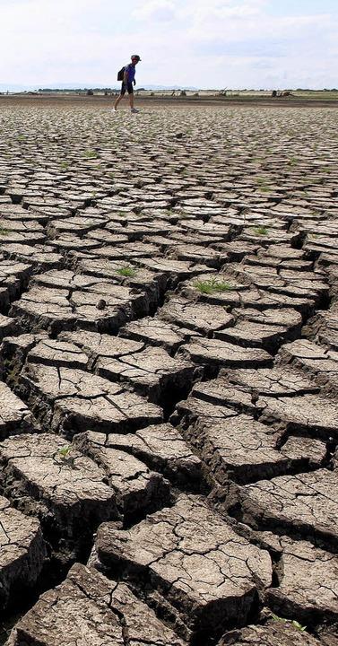 Dürre in Thailand 2010   | Foto: dpa