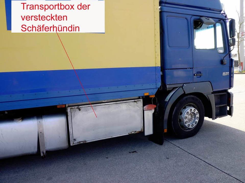 In dieser Box sollte der Hund von Köln nach Sizilien transportiert werden.    Foto: Schweizer Zoll Basel