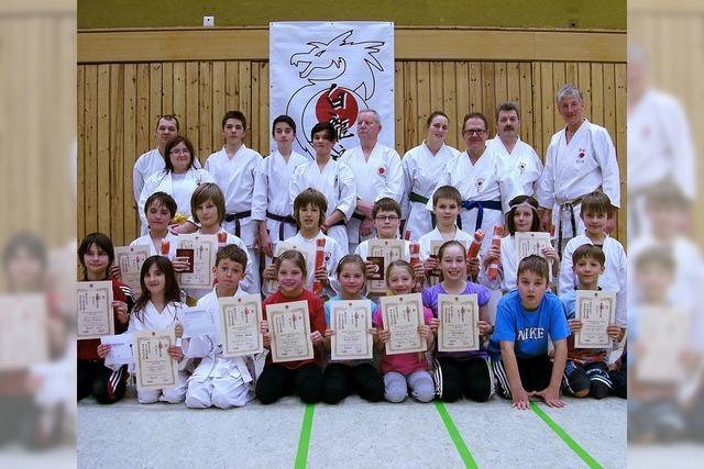 Karatekämpfer aus Kappel