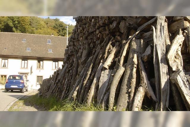 Holz kommt untern Hammer