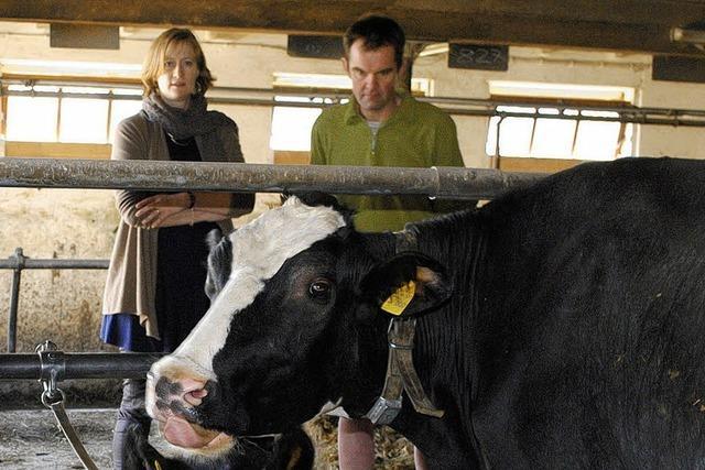 Kühe melken statt Vokabeln pauken