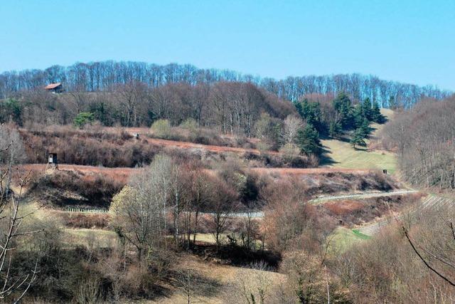 Neues Naturschutzgebiet in Schelingen