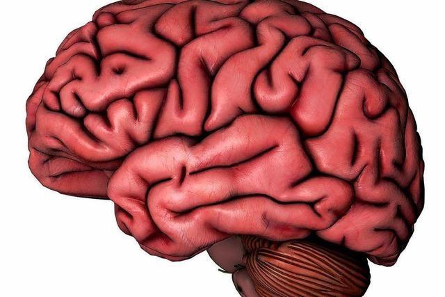 Was in den Gehirnen von Verbrechern passiert