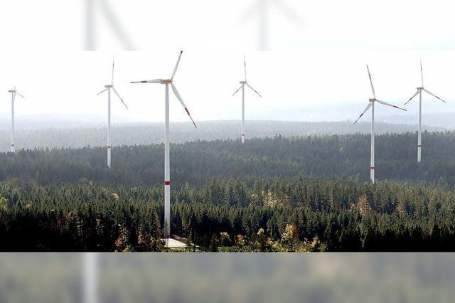 EWS wird Windpartner im Wiesental
