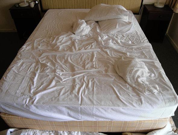 attacke der bettwanzen bildung wissen badische zeitung. Black Bedroom Furniture Sets. Home Design Ideas