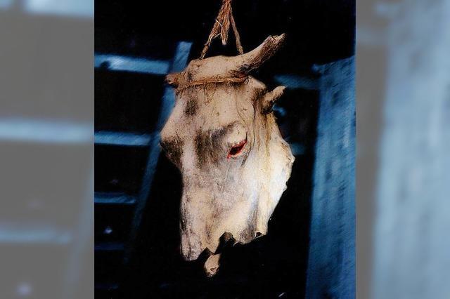 Der Ochsenkopf im Dachgebälk