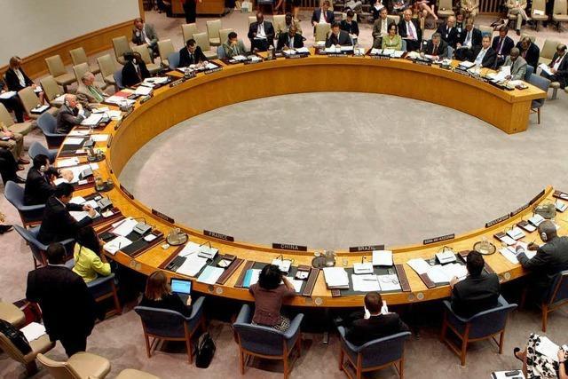 UN-Sicherheitsrat schickt Beobachter nach Syrien