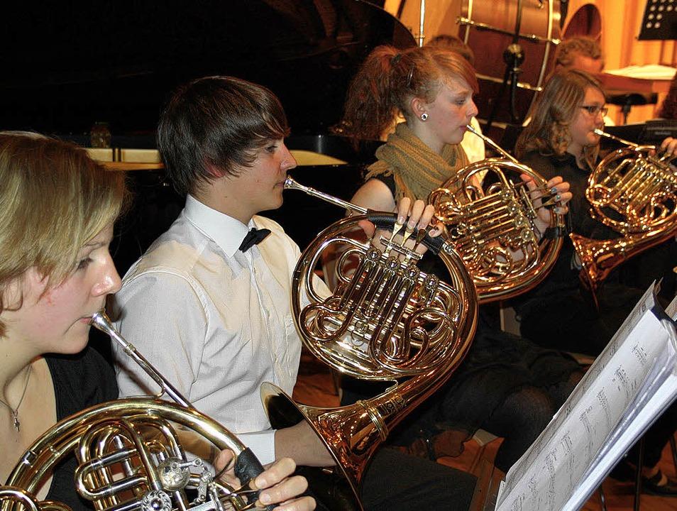 Ein Doppelkonzert der Extraklasse bote...in und vom Alemannischen Musikverband.  | Foto: Andreas Böhm