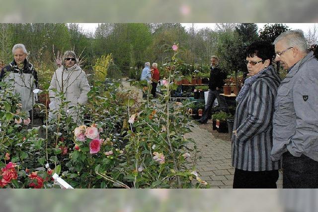 Regentropfen trüben die Stimmung beim Gartenfest