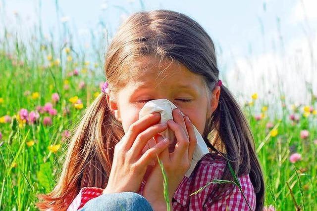 Die Pollen sind im Anflug