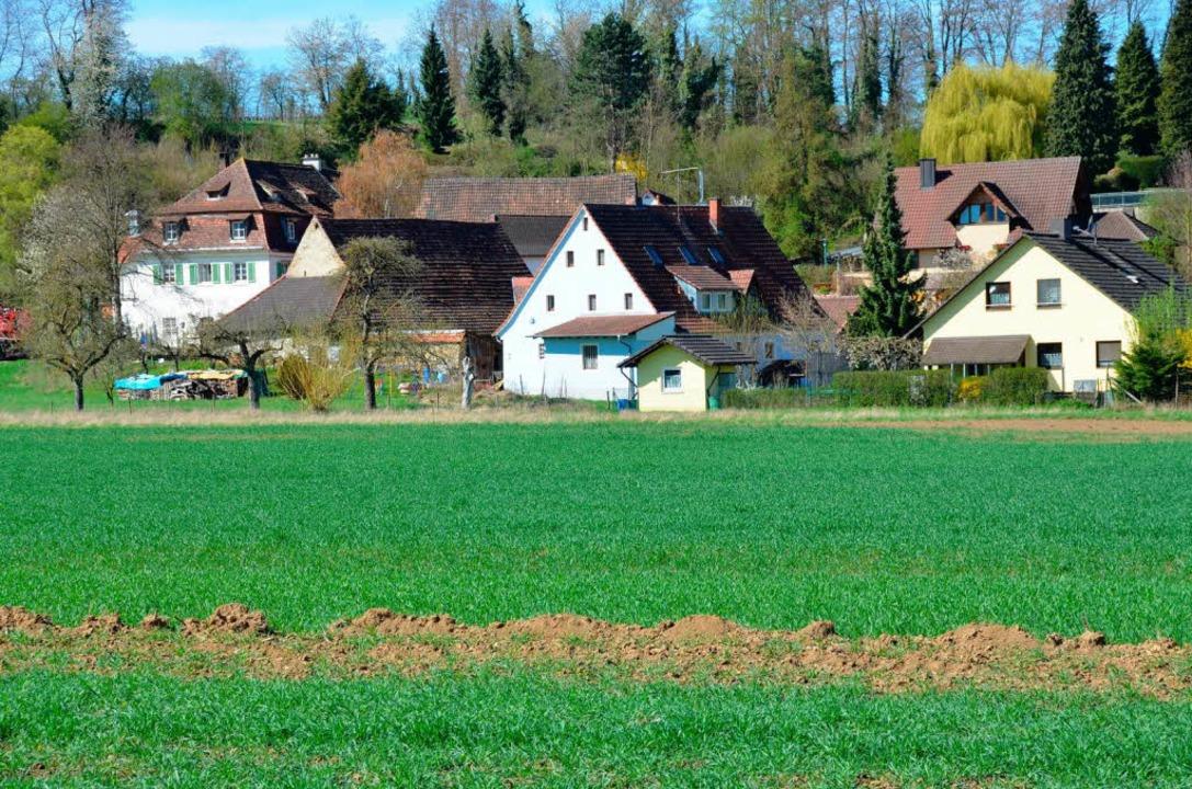 Zwischen der unteren Mühle in Bugginge...elle. Sie wurde  wieder zugeschüttet.   | Foto: Sigrid Umiger