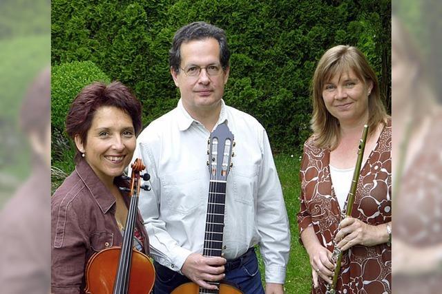 Konzertreihe im Museum beginnt mit Klassik