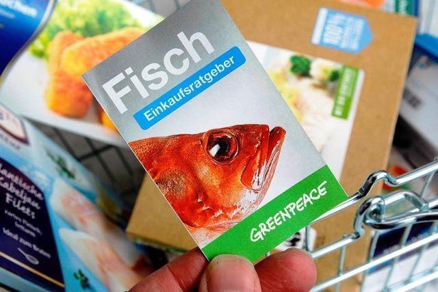 Greenpeace: Rotbarsch und Aal besser nicht kaufen