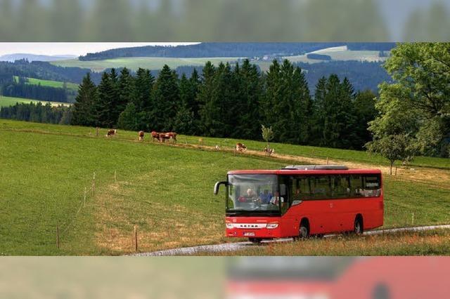 Im Bus entlang der Schlucht