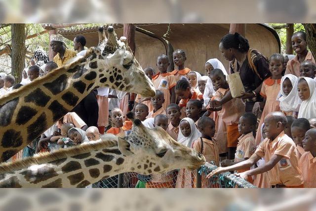 Nägeles Schulprojekt in Kenia wächst rasant