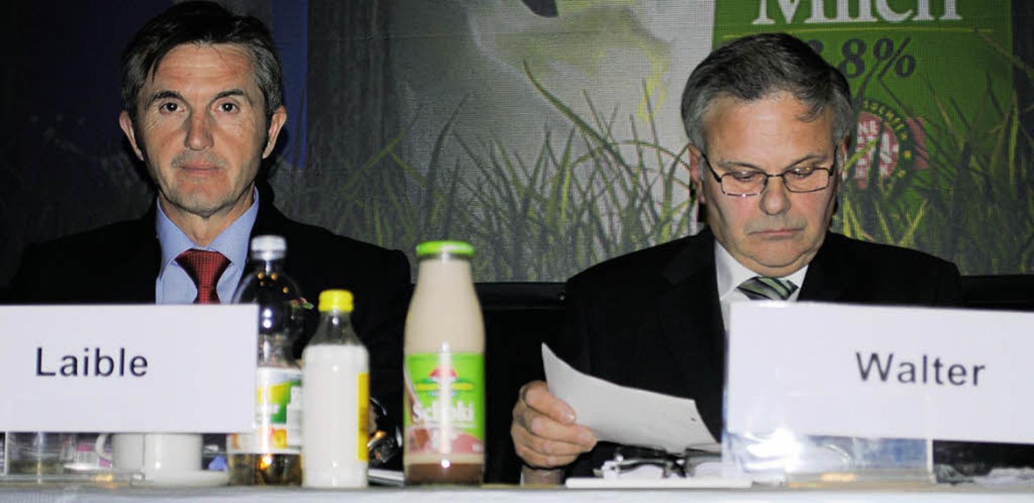 Schwierige Situation: Karl Laible und Anton Walter   | Foto: robert Ullmann