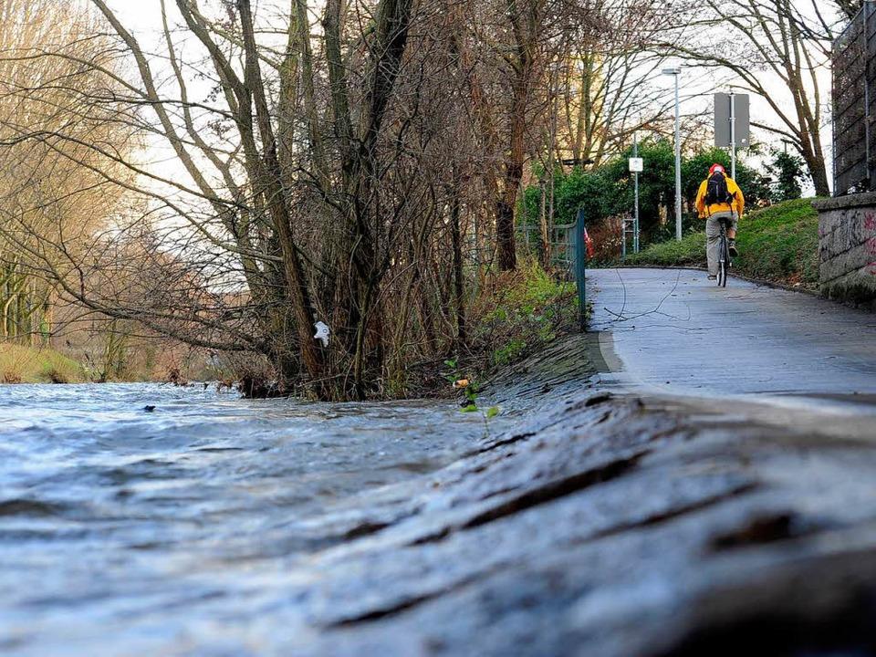 Sonst ein harmloser Fluss, doch für de...rger Dreisam wohl zur tödlichen Falle.  | Foto: Thomas Kunz