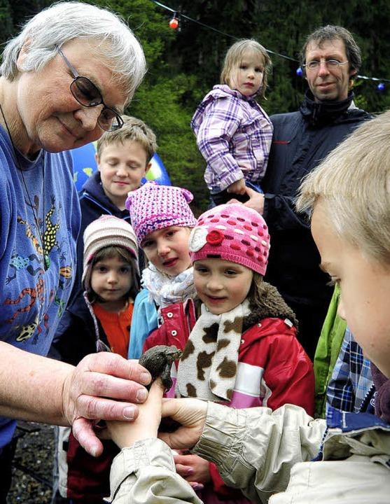 So fühlt sich eine Kröte an: Gisela Fr...– und zwar schon seit 25 Jahren.    Foto: Thomas Kunz