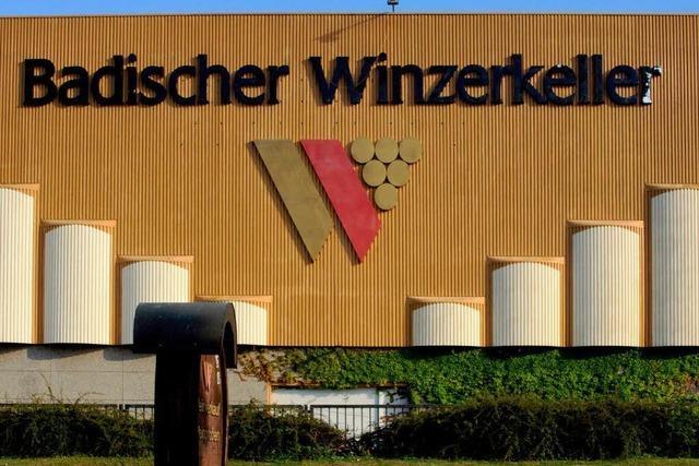 Badischer Winzerkeller ordnet Führung neu – Axel Hahn wird Chef