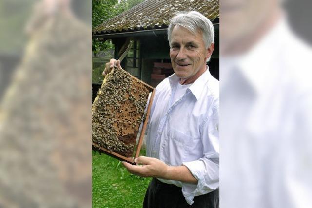Den Bienenvergiftern auf der Spur