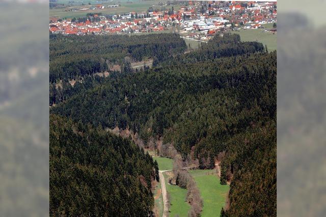 Wald bleibt Sparkasse der Kommune