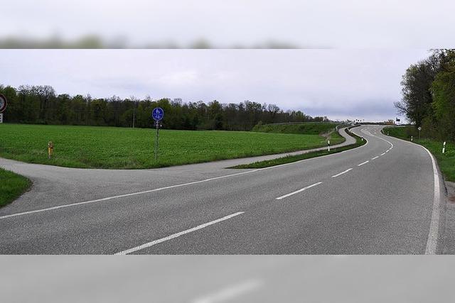 Rad- und Fußweg kreuzt L 116